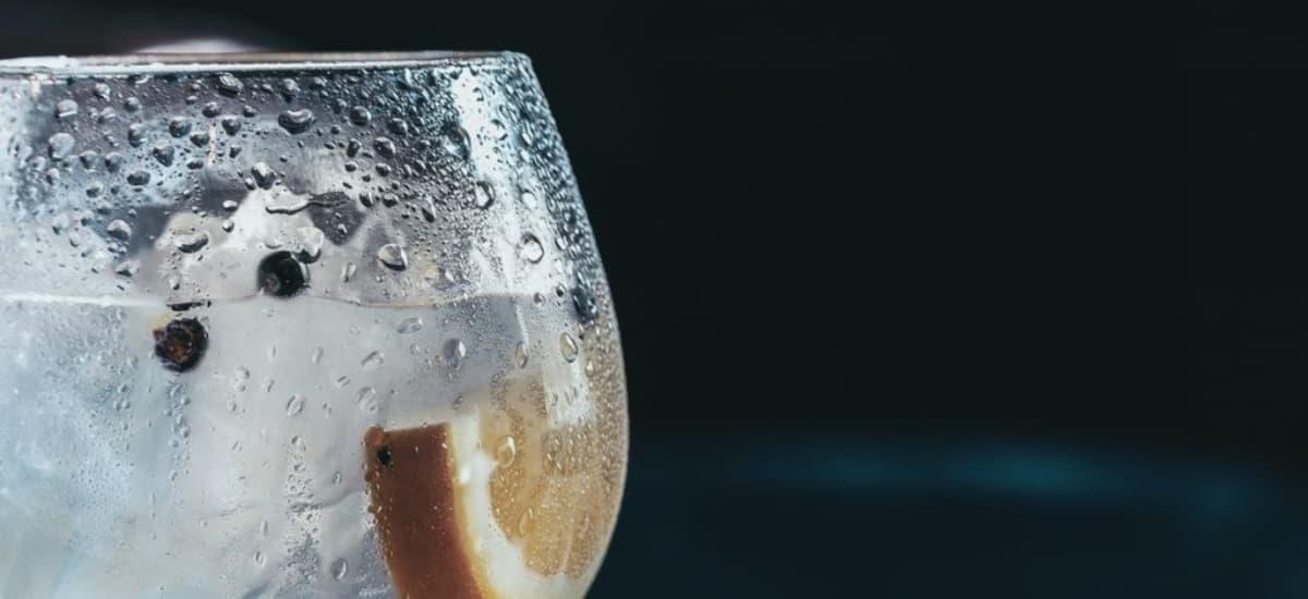 Gin Tonic Cocktail (einfaches Rezept mit Tonic Water + Tipps vom Barkeeper)